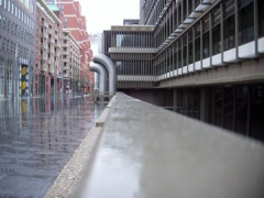 rainy The Hague