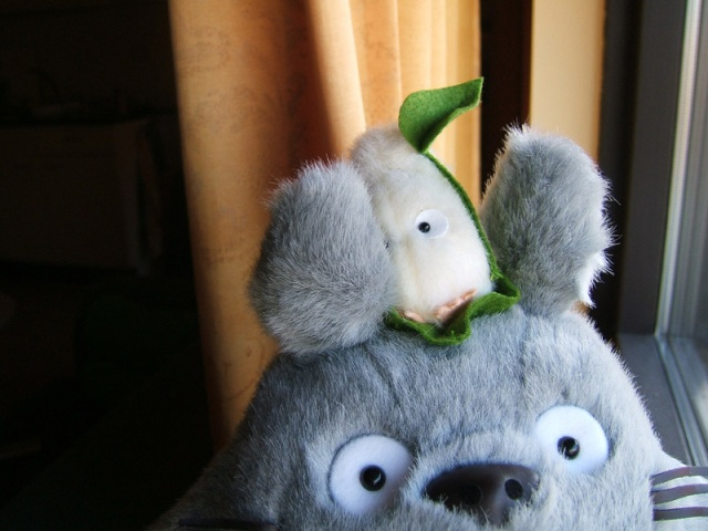Totoro and friend